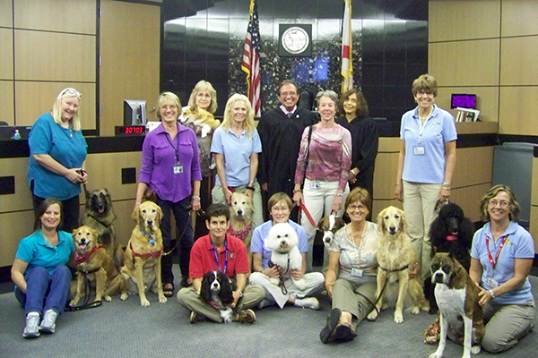 Dogs with handlers, judge and magistrate